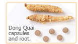 Dong quai capsules