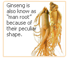 ginseng etymology
