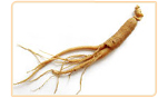 ginseng phytoestrogenic