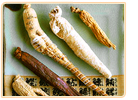 ginseng types