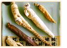 ginseng types