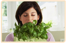 Herbs For Menopause relieves