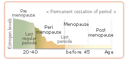 perimenopause
