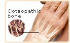 phytoestrogen bone