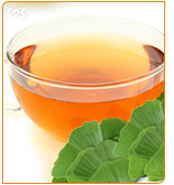 Ginkgo biloba can be consumed in tea or raw