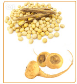 Soy is good to treat osteoporosis and macafem nourishes and stimulates the endocrine system.