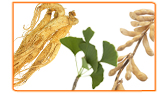 Combining Herbs with Lifestyle Changes to Treat Menopause
