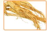 4 Benefits of Ginseng