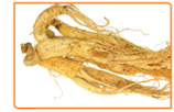 Ginseng and Memory Loss: What It Does and How