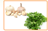 How Do Phytoestrogens Affect Progesterone Hormone Levels?