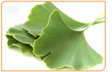 Ginko biloba is an herbal remedy to improve your blood flow