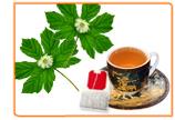 Herbal Remedies to Combat My Menopause Symptoms
