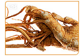 Ginseng has been effective for menopausal women, but it come with certain side effects.