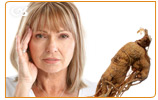 Ginseng contains ginsenosides which improve your memory performance